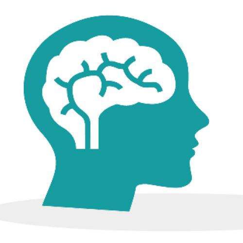 Cognitive Psychologist